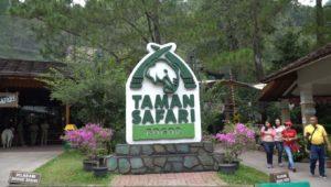 Ini Dia Daftar Tempat Wisata Anak di Cisarua Bogor